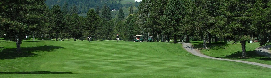 Several golfers navigate Lewis Creek Golf Course